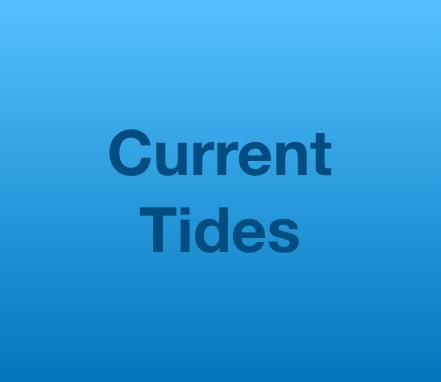 Current Tides with Betty & Friends